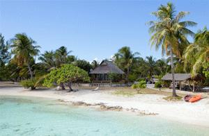 Fiches-infos-polynesie