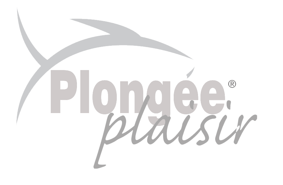 logo_plongee_plaisir_gris_trs-2