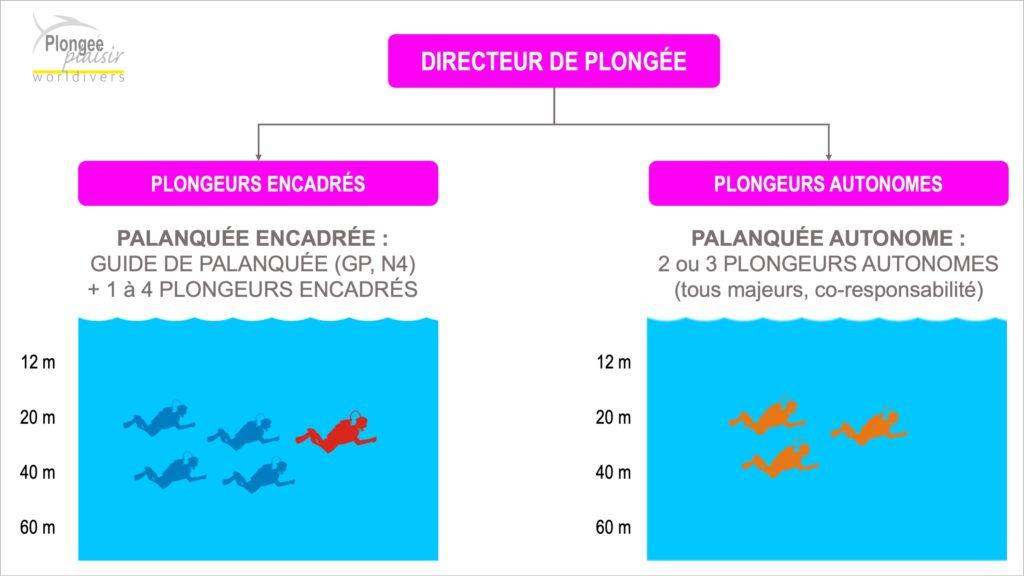 Les niveaux de plongeurs en France